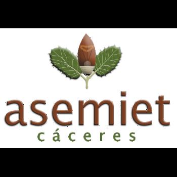ASEMIET_WEB